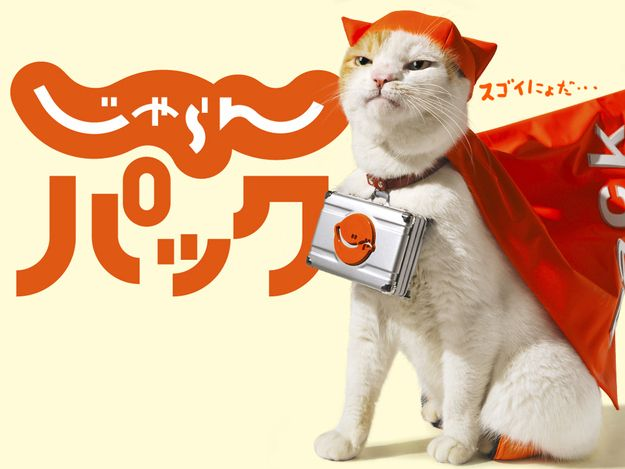 NyaRan, Japan's Travel Agency Spokes-Cat