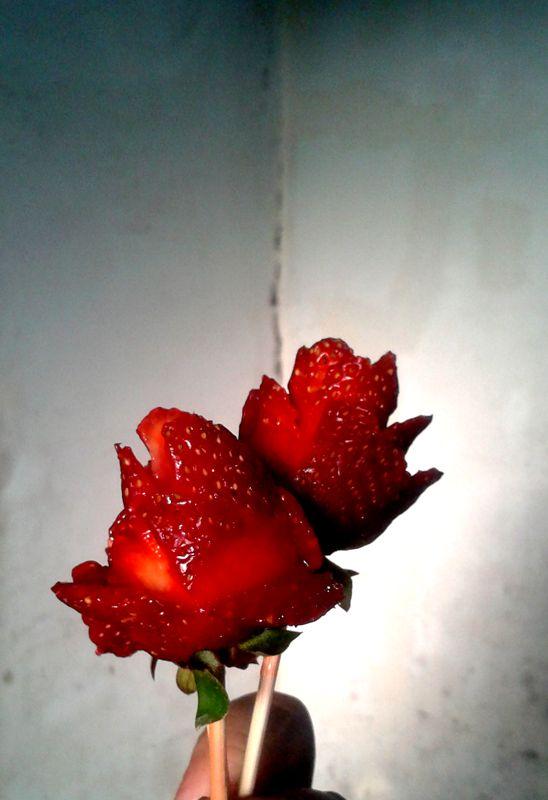 Rosas de Frutillas