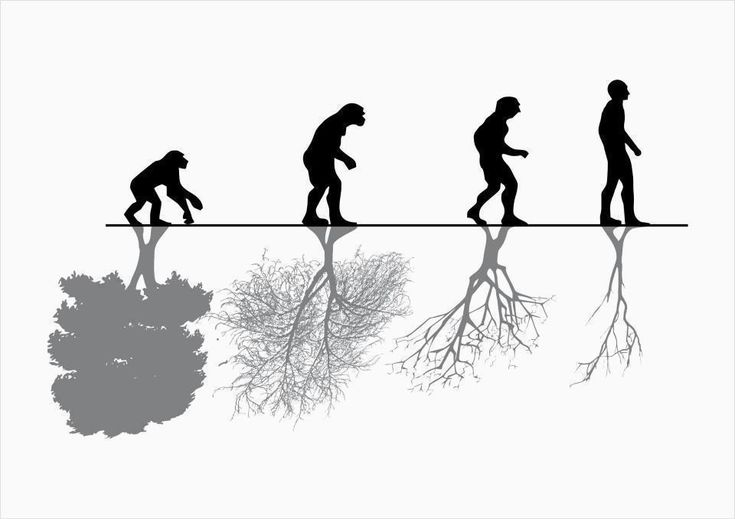 "Evolution of Me - behind each ""stage"" will be an environment that corresponds with the stage :)"