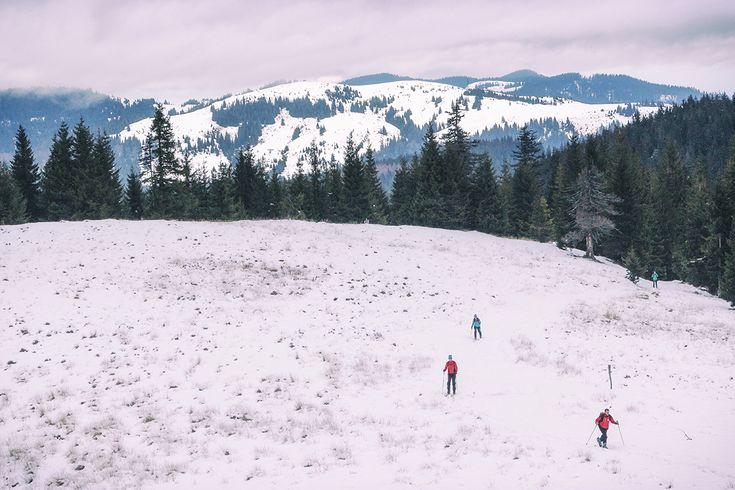 Spre Vf Poieni pe schiuri | Bihor in imagini