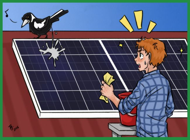 17 Best Images About Solar Cartoons From The Blog On