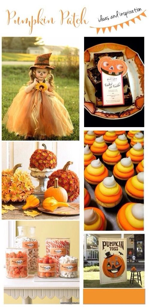 Pumpkin Patch! Ideas and Inspiration  www.frostedevents.com/blog  The best…