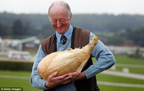 68 year old gardener Peter Glazebrook produces onion weighing 18lb and smashes the world record previously set by himself.     i am so happy 4 him look how happy he looks    a man and his onion     he's gazing at it so tenderly    my son……..    MY SONION