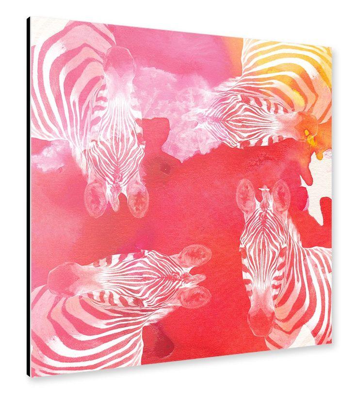 Rainbow Zebra Alu-Print