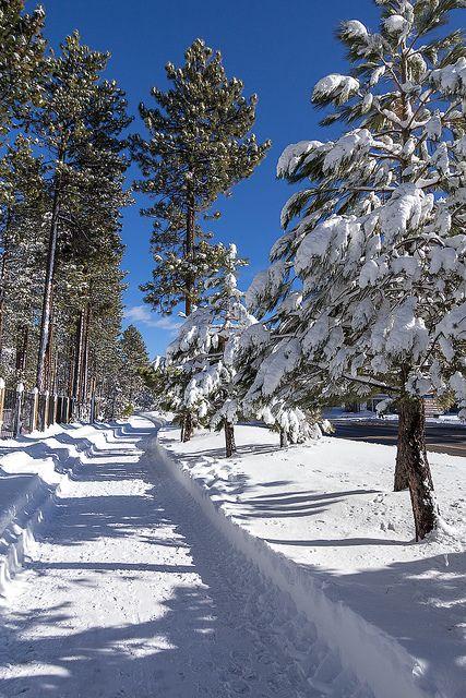 Lake Tahoe Summer Getaway: 17 Best Ideas About Tahoe Vacation Rentals On Pinterest