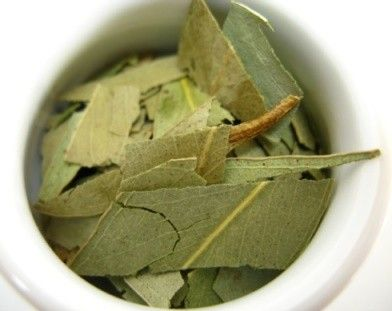 Eucalyptus tea - perfect for making a cup of tea.