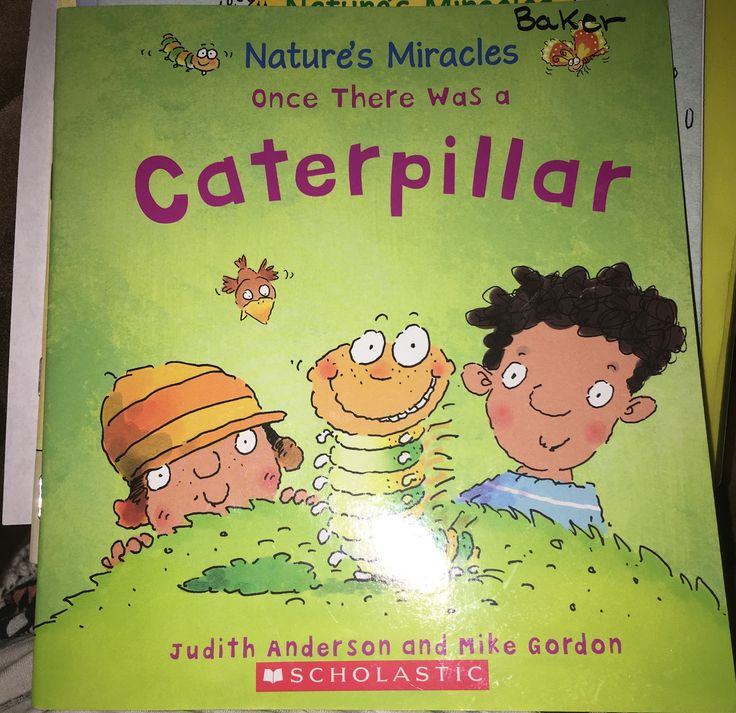 Non-Fiction Title: Once there was a Caterpillar By: Judith Anderson and  Mike Gordon Ages: 4-8 year old Summary: With facts and pictures this book gives great detail about the life cycle of a caterpillar. It has great vocabulary.