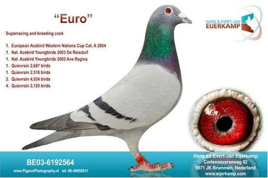 """""""De Euro"""" from Leo Heremans"""