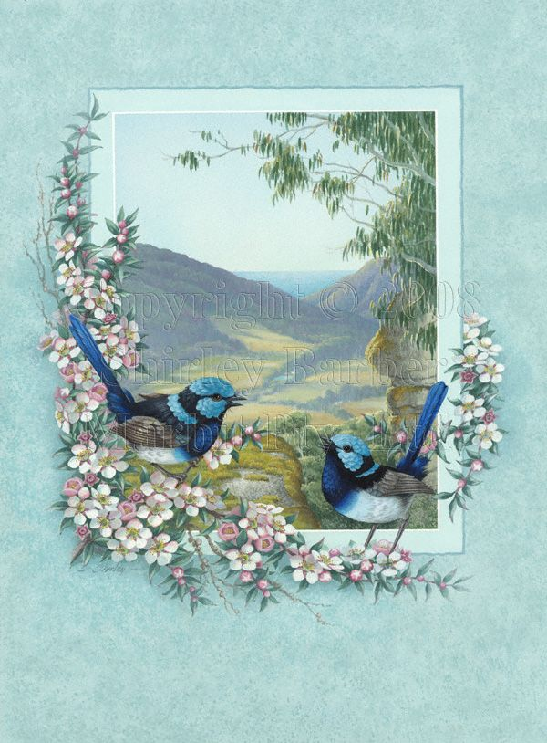 1000 images about blue wren inspired arts and crafts on pinterest watercolour birds and barbers. Black Bedroom Furniture Sets. Home Design Ideas