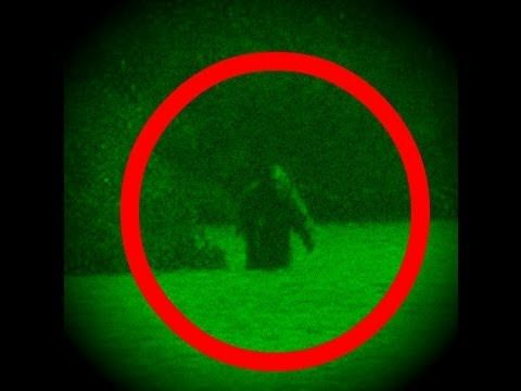 Bigfoot Attacks Scientists In Canada Documentary (on Snelgrove Lake, ON), HistoryHD.com, YouTube, Published on Apr 24, 2013. Blood and tissue has been found at a remote cabin damaged by some unknown creature. Could Canada have it's own Sasquatch and are the investigating MonsterQuest crew safe from its attack?