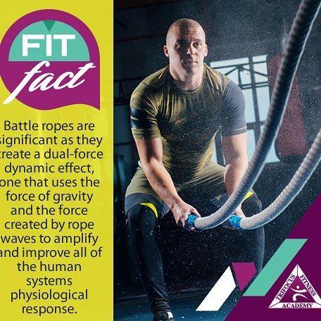 #battleropes #gymjunkie #build #achieve #betterbody #flex #amped #shredded #ripped #fitnessmotivation #stayactive #effort #fitfood #loveit  http://www.trifocusfitnessacademy.co.za/  #Regram via @trifocusfitnessacademy (scheduled via http://www.tailwindapp.com?utm_source=pinterest&utm_medium=twpin&utm_content=post179173081&utm_campaign=scheduler_attribution)