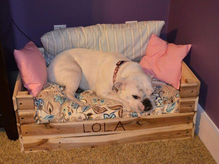 Caminha de cachorro – Faça em casa uma caminha para seu cachorro!