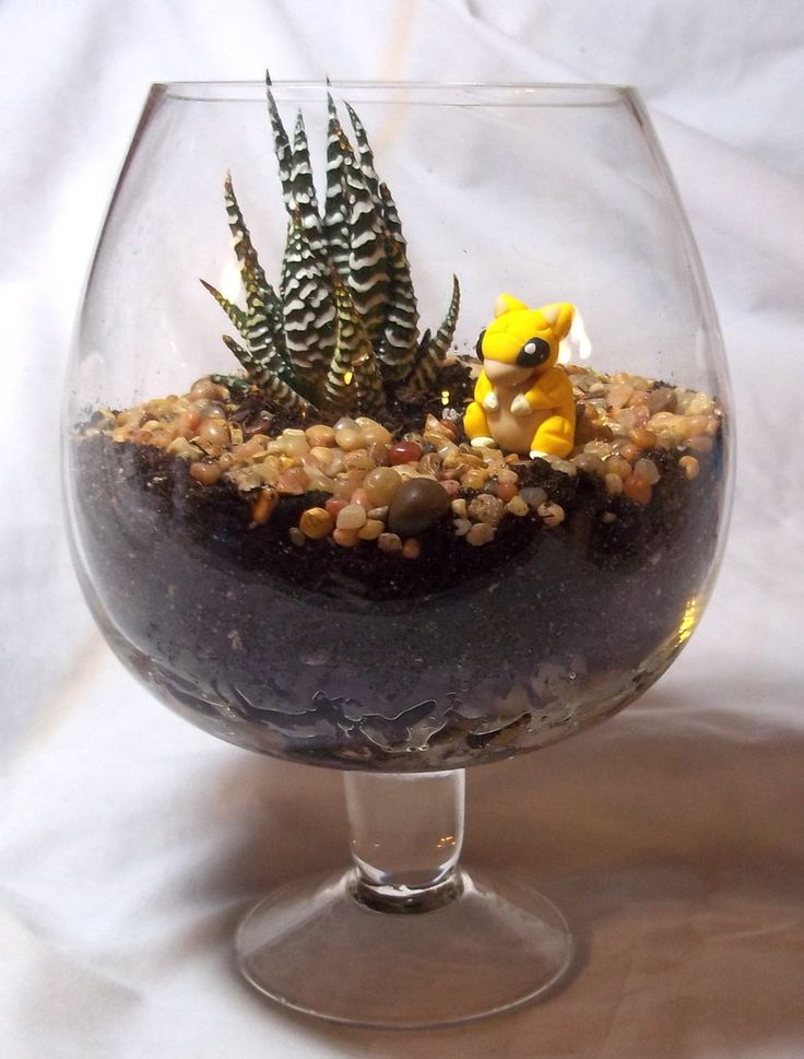 Pokemon Terrarium: Sandshrew by CadmiumCrab -- this is awesome I want to do this