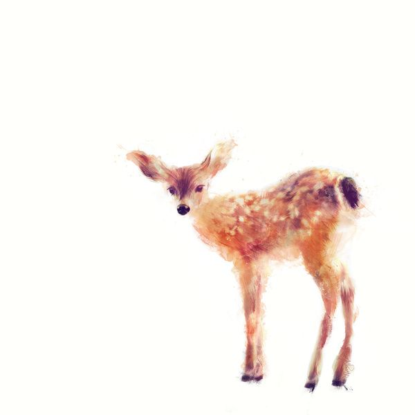 what canvas and a simple painting of a fawn.