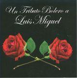 Un Tributo Bolero a Luis Miguel [CD], 13861537