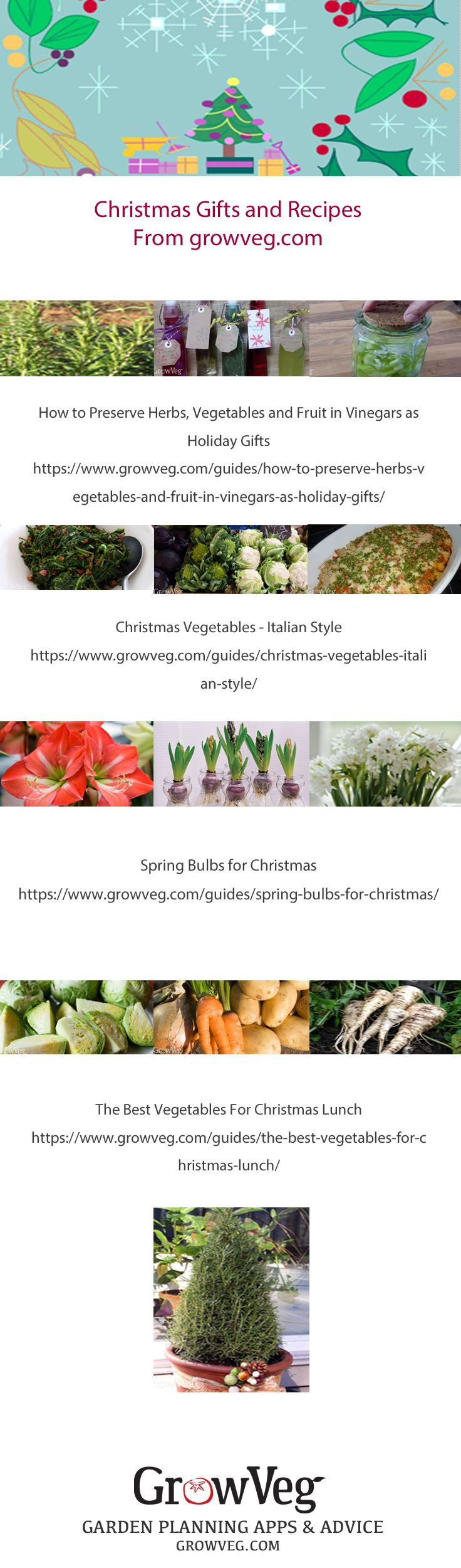 443 best love mediterranean gardening images on pinterest flower a collection of fruit and vegetable recipes and gifts inspired by our love of growing our forumfinder Image collections