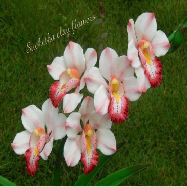 Cymbidium orchid flowers..(clay flowers). https://www.facebook.com/suchethaclay?ref=hl