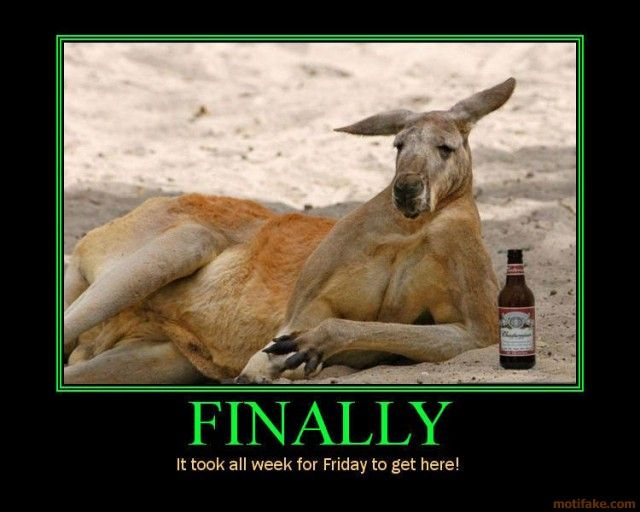 Finally Friday Funny Meme : Images about finally friday on pinterest its