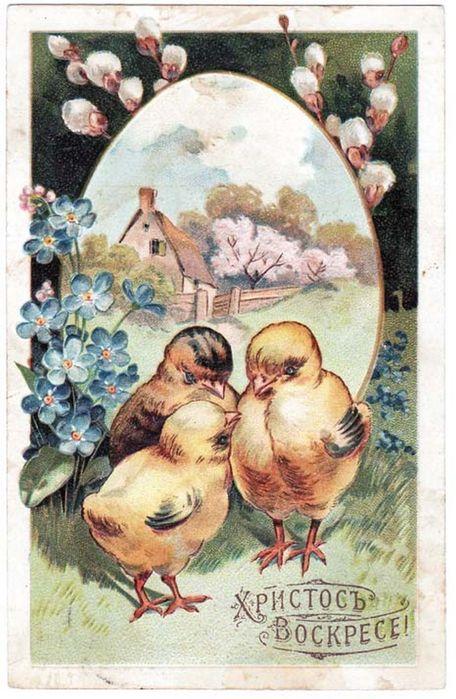 Винтажные открытки к Пасхе сделанные в России 229 (456x700, 393Kb)
