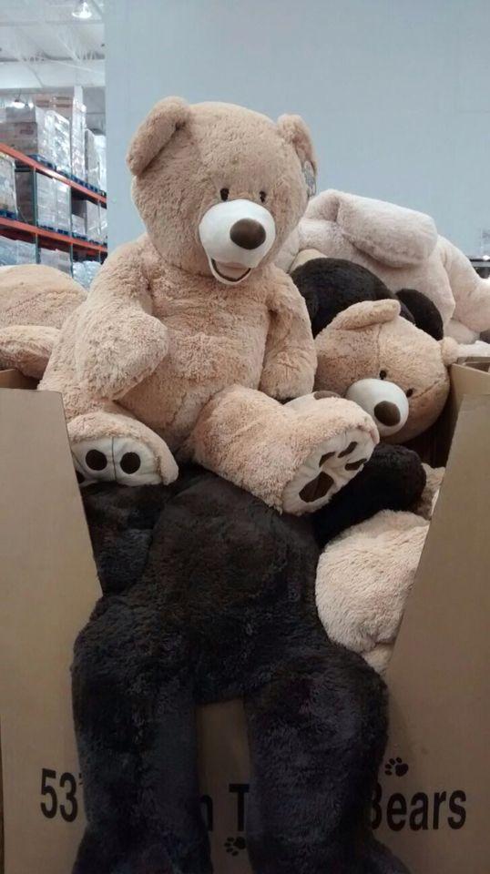Grandes osos de peluche