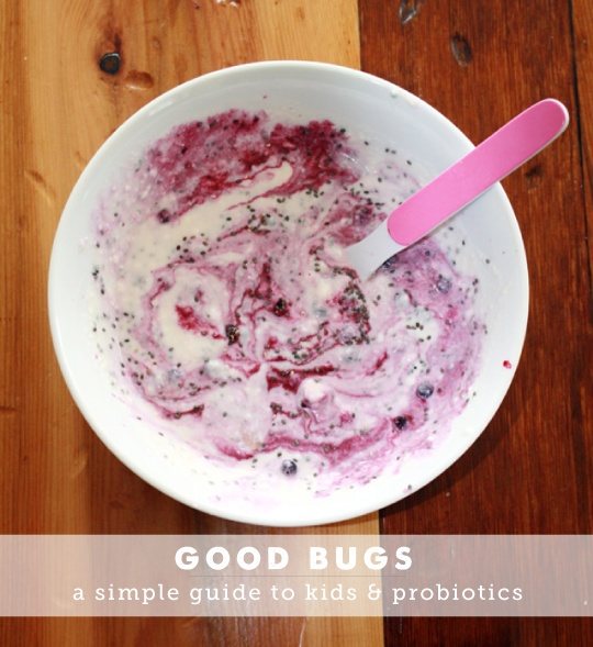 A simple guide to the benefits of probiotics and how to easily incorporate them into your family's diet.