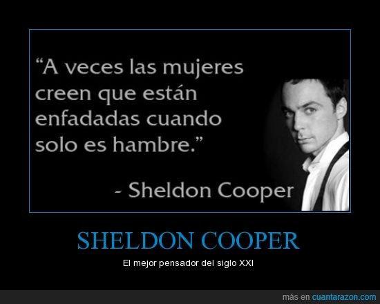 SHELDON COOPER - El mejor pensador del siglo XXI