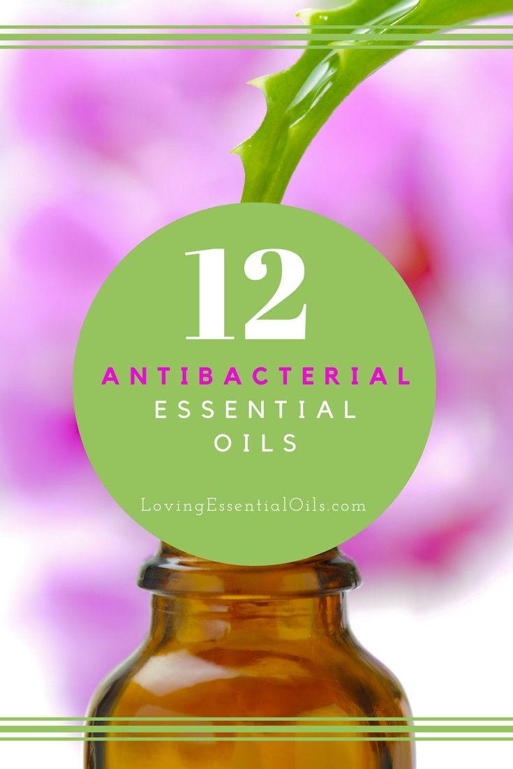 Top 12 Antibacterial Essential Oils   Best Essential Oil to Kill Germs   Essential Oil Tips & Uses   Germ Fighting Oils