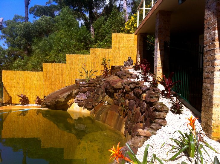 Pool area, tropical planting, bamboo screen