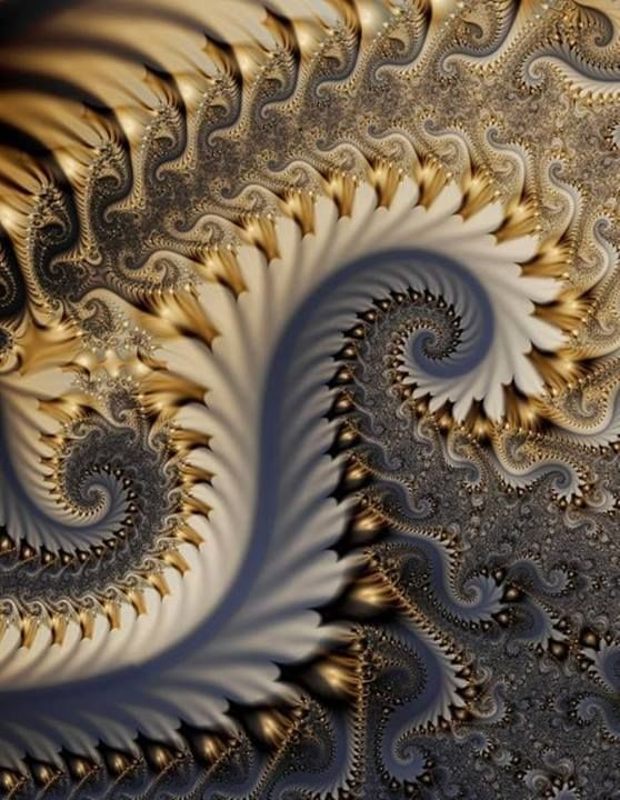 Fractal art - A particularly nice fractal. These infinitely complex forms are generated by such simple equations: amazing