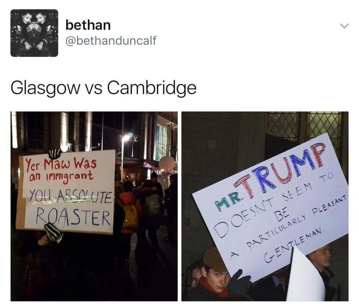 29 Ridiculous Scottish Tweets Perfect For the Saturday Pick-Me-Up