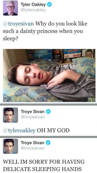 It is a rare sighting of the beautiful, majestic Troye. Love them