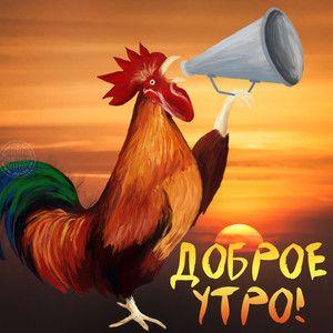 Guten Morgen der Bilder lustige Postkarten mit einem Hahn