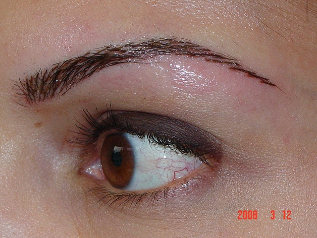 51 best images about eyebrow enhancement on pinterest for Tattooed eyebrows pictures