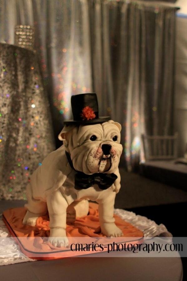 17 images about dog cakes on pinterest amazing dogs for Cake craft beavercreek ohio