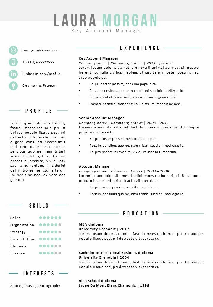 Resume Template Mont Blanc Resume Template Word Resume Examples