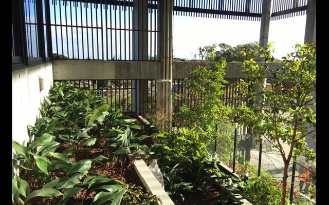 A little insight to the roof garden at South East Water Headquarters in Frankston