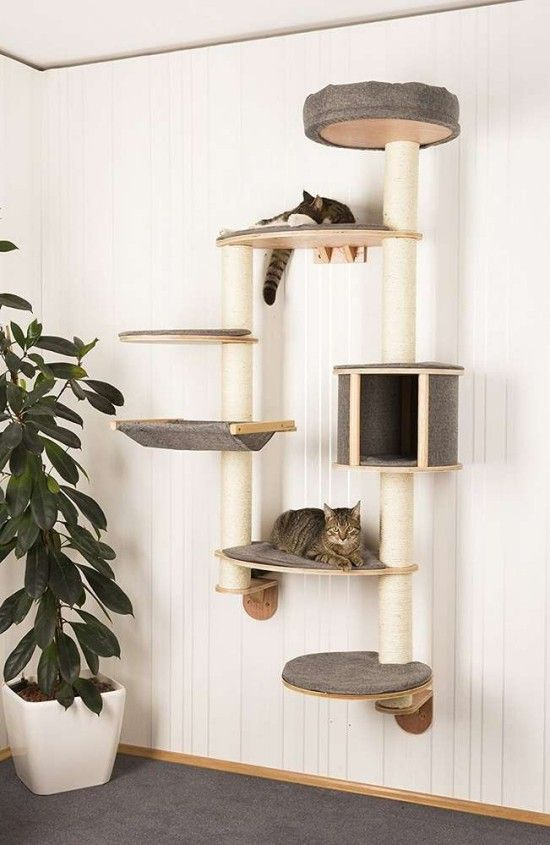 Find varied and practical ideas for the cat climbing wall!