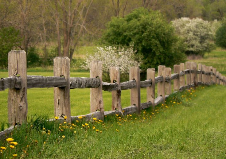 Old Wooden Barb Wire Fence