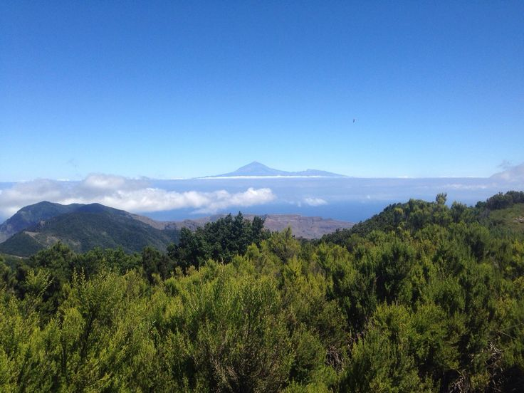 Alto de Garojonay, La Gomera: See 47 reviews, articles, and 25 photos of Alto de Garojonay, ranked No.11 on TripAdvisor among 55 attractions in La Gomera.