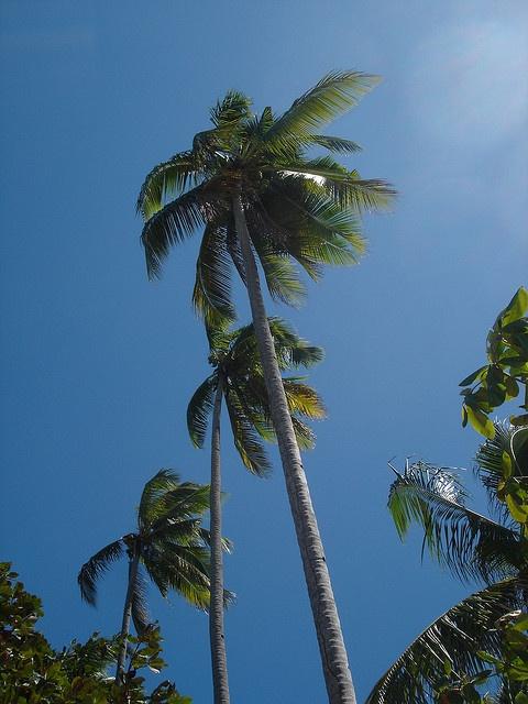 Bangka Island, Indonesia