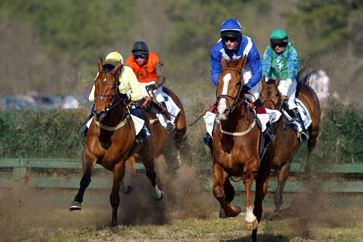 Springdale Race Course - Race Tracks - Watch live the horse race to finish line at the Carolina cup in the exquisite steeplechase course of the Springdale Race Cour