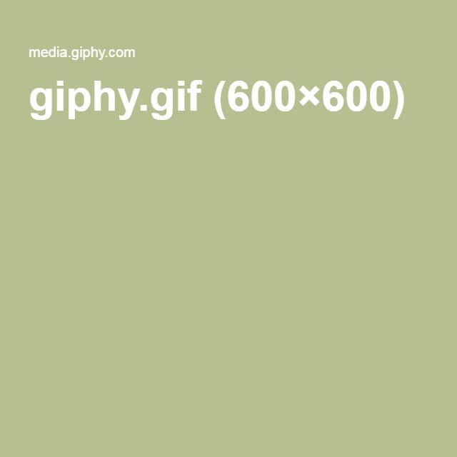 giphy.gif (600×600)