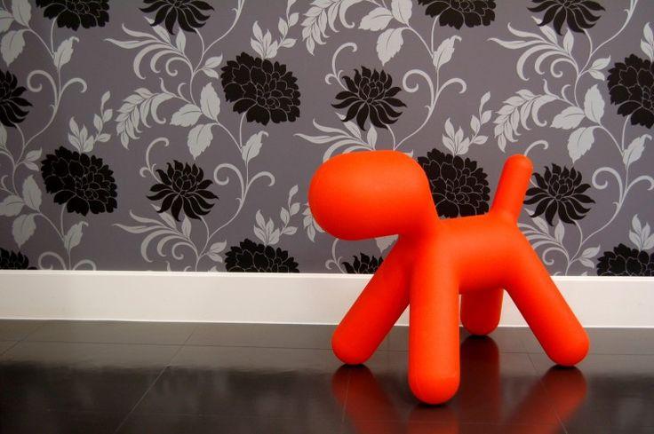 Orange dog at Chelsea & Westminster NHS Trust