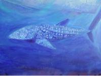 Whale Shark 3  91cm x 91cm  mixed media on canvas  $1,500.00