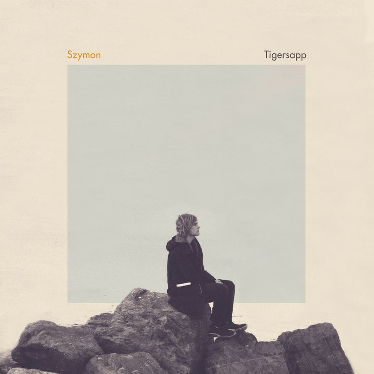 szymon tigersapp 209 best music album covers inspiration images on pinterest      rh   pinterest