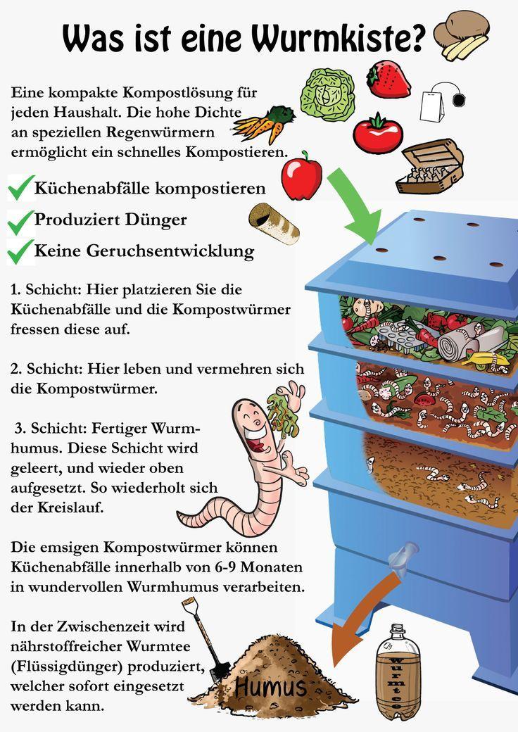 Was ist eine Wurmkiste? Kompostwürmer kompostieren schneller
