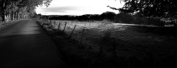 Höstmorgon. Dagg i gräset. Mjukt ljus. Den här vägen leder bort från Slottsmöllan. Nere i dalen flyter Nissan fram.