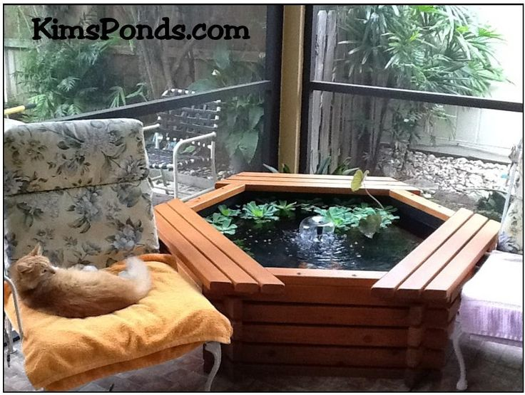 24 Best Images About Kim 39 S Ponds Complete Pond Kits On