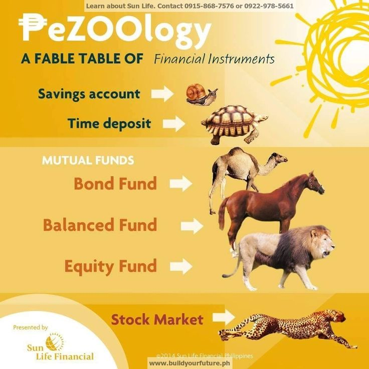 Pezoology Choose Your Vehicle To Grow Your Money Sun Life