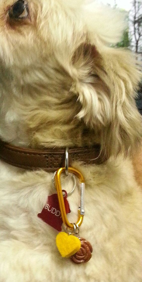 Buddy's Goldstone Rose Collar Aromatherapy Tag by Aromawearables